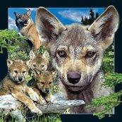 Pocztówka 3D Młody Wilk