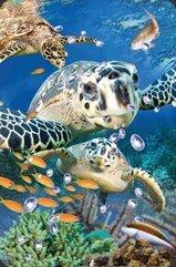 Mini kartka 3D Żółw Morski