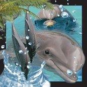 Pocztówka 3D Delfin