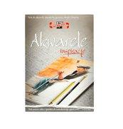 Blok Inspiracje - Akwarele A4/20 arkuszy 320g