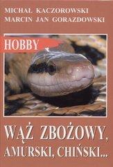 Wąż zbożowy, amurski, chiński...