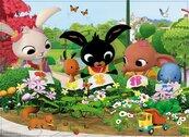 Puzzle Maxi Bing 24 Podziwiajmy naturę