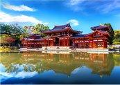 Puzzle 1000 Japonia, Świątynia w Byodo