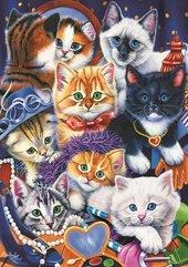 Puzzle 1000 Małe kotki w szafe