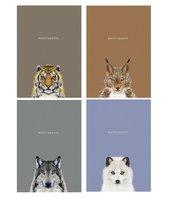 Notes A5/64K gładki Sketch&note Wild Animals ASTRA
