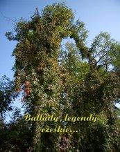 Ballady, legendy czeskie...