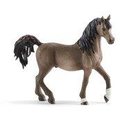 Rasa Arabska - Koń ogier - Schleich