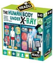 Ludzkie ciało HEADU