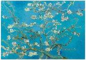 Puzzle 1000 Kwitnące drzewo migdałowca