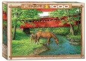 Puzzle 1000 Rodzina koni
