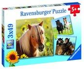 Puzzle 3x49 Konie