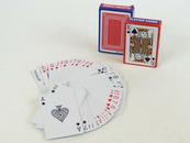 Karty do gry 2 talie 54 karty 157767. ADAR