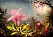 Puzzle 1000 Orchidea Cattleya i trzy kolibry