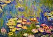 Puzzle 1000 Nenufary, Claude Monet