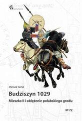 Budziszyn 1029