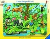 Puzzle 11 Co tu pasuje? Zwierzęta lasu deszczowego