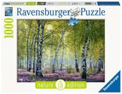 Puzzle 1000el Brzozowy las - Nature edition 167531 RAVENSBURGER