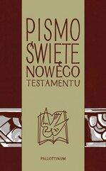 Pismo Świete - NT z ilustracjami