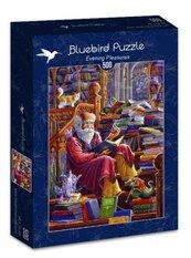Puzzle 500 Wieczorne przyjemności