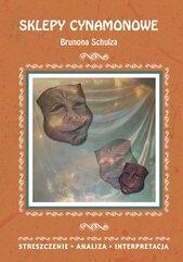 Sklepy cynamonowe Brunona Schulza. Streszczenie, analiza, interpretacja