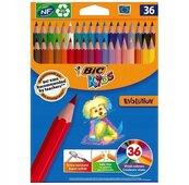 Kredki ołówkowe Kids Evolution ECOlutions 36szt