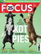 Focus 7/2021