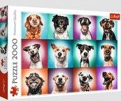Puzzle 2000 Zabawne psie portrety II TREFL