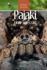 Pająki i inne pajęczaki. Spotkania z przyrodą