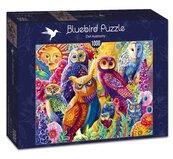 Puzzle 1000 Kolorowe sowy