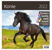 Kalendarz 2022 z naklejkami Konie NARCISSUS