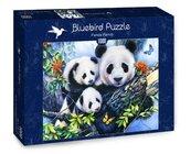 Puzzle 1000 Rodzinka Pand