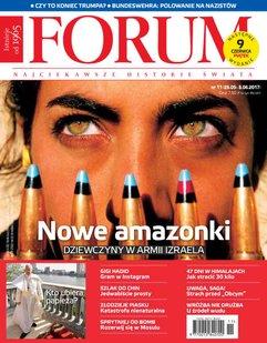 Forum nr 11/2017