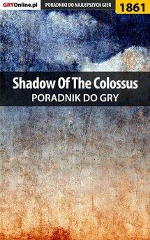 Shadow of the Colossus - poradnik do gry