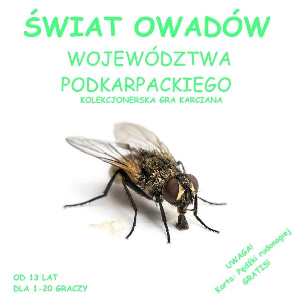 Świat Owadów Województwa Podkarpackiego (Gra Karciana)