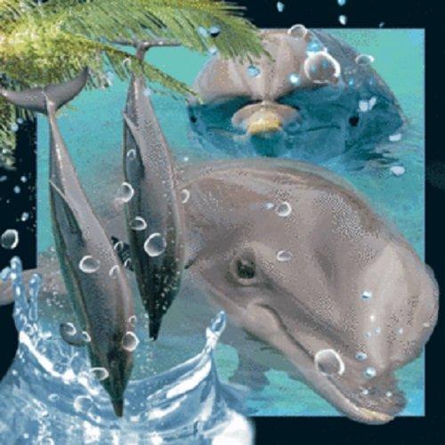 Magnes 3D - Delfin