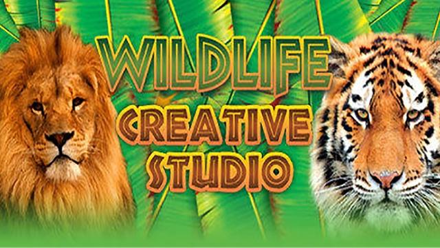 Wildlife Creative Studio (PC) klucz Steam