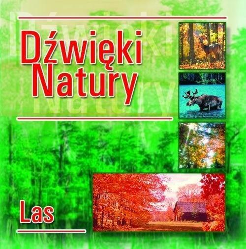 Dźwięki natury. Las CD