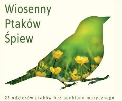 Ptasi Poranek w Lesie CD