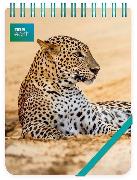 Kołonotes ozdobny Leopard in sand