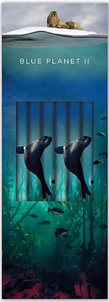 Ołówek ozdobny Sea Lion (6szt)