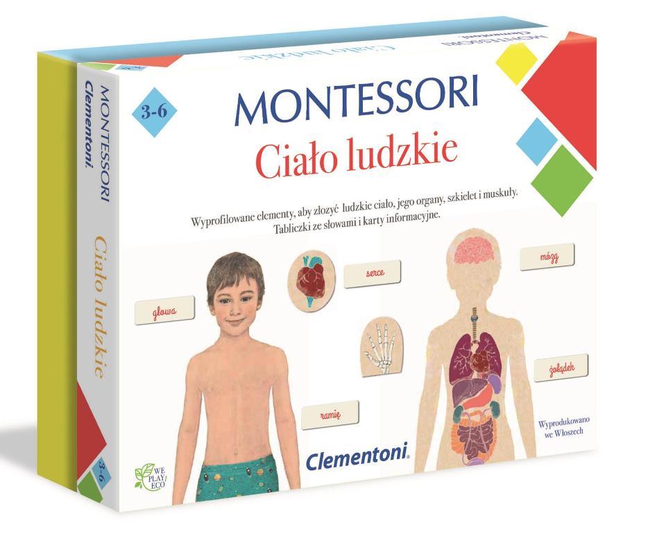 Montessori Ciało ludzkie