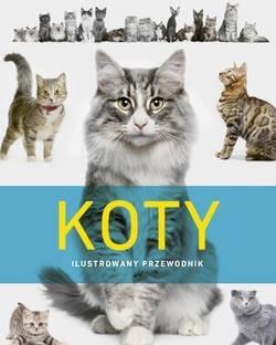 Koty. Ilustrowany przewodnik