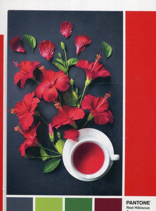 Puzzle 1000 Pantone Red Hibiscus Aroma