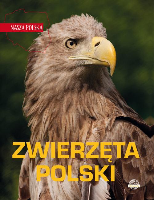 Nasza Polska Zwierzęta Polski