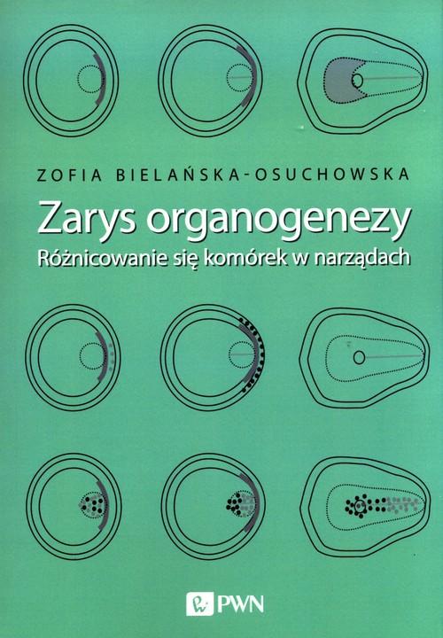 Zarys organogenezy