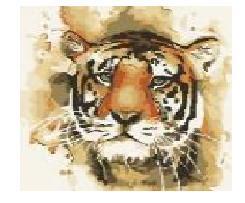 Malowanie po numerkach Creative Adults. Tygrys
